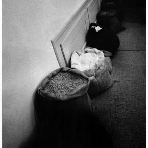 Яннис Кунеллис. Без названия. 1969