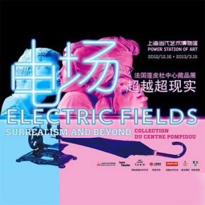 Плакат выставки © centrepompidou.fr